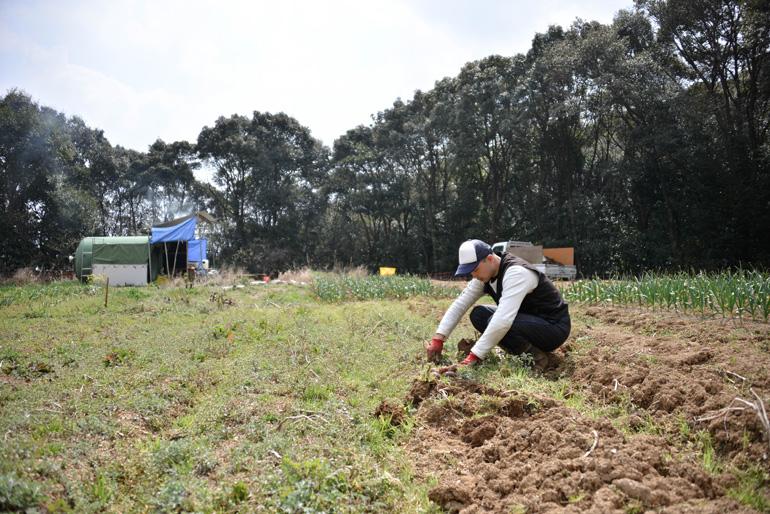 農園での畑仕事